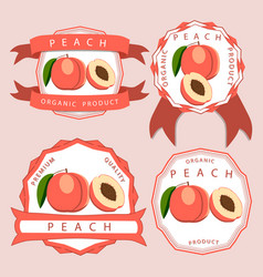 the theme peach vector image