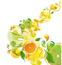 Citrus abstract splash vector