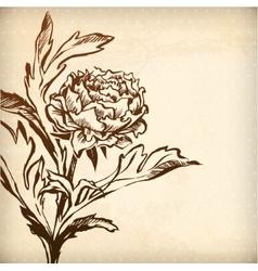 Gentle spring chrysanthemum vector