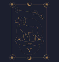 Astrological zodiac sign constellation and symbol vector