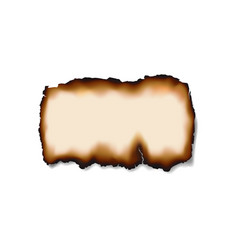 Burnt damaged piece paper or document isolated vector