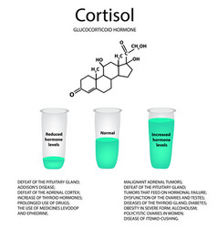 chemical molecular formula of the hormone cortisol vector image