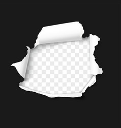 Hole in paper with torn sides and ripped edges vector