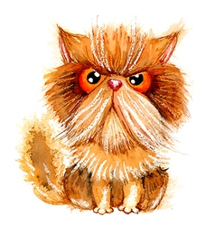 Hand drawn watercolor grumpy persian cat vector image