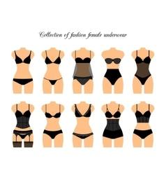 Female lingerie or underwear set vector image