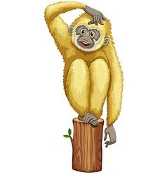 A yellow chimpanzee vector