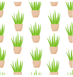 aloe vera plant in pot seamless pattern vector image