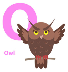 Brown cartoon owl on character o educational card vector