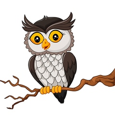 Cartoon owl bird posing on the tree vector