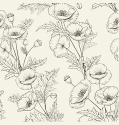 pattern poppy flowers on a gray background vector image