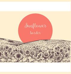 sunflower fields border vector image