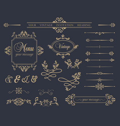 variety decorative elements set vector image