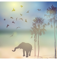 Elephant birds palm silhouette on sunny sky and vector image