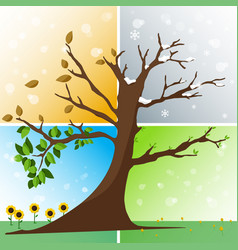 four seasons in one tree vector image
