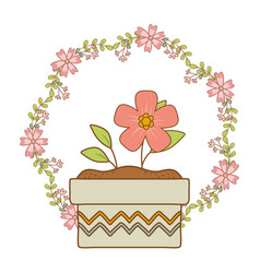 beautiful flower and leafs in ceramic pot and vector image