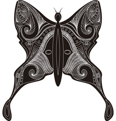 Butterfly stencil vector