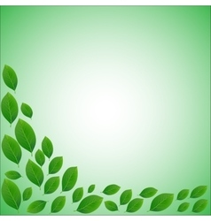 Natural frame for a card of realistic green leaves vector