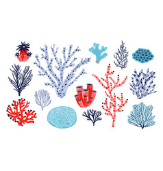 Set of different corals and seaweed or algae vector
