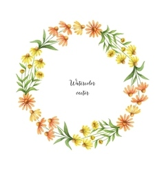 Watercolor round frame of echinacea vector