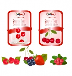 labels with cherries vector image vector image