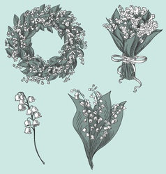 Set of lily of the valley drawings vector image vector image
