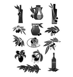 olives olive oil bottles and pitchers vector image vector image
