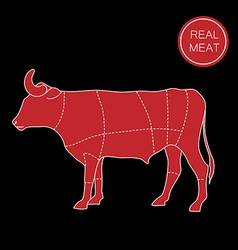 real meat vector image