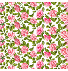 Rose flower blossom leaf seamless pattern vector