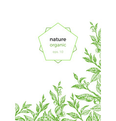 Template nature green 2 vector