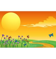 Full Moon Butterflies vector image vector image