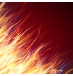 Fire flames background EPS 10 vector image vector image