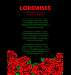 black poster with red roses and green leaves vector image vector image