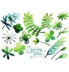 Watercolor spring plants vector image