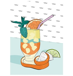 Cocktail with orange peel Hand drawn vector image