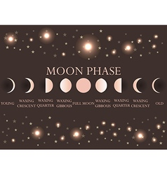 The phases of the moon vector image