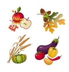 Vegetables and Fruits Stalks Autumn Leaves vector image