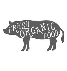 Hand drawn farm animal pig fresh organic food vector