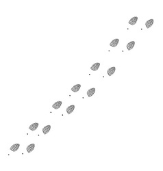 Footprint trail vector image