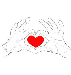 hands showing heart vector image