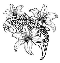 koi fish drawing vector image
