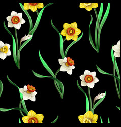seamless pattern with white and yellow daffodils vector image