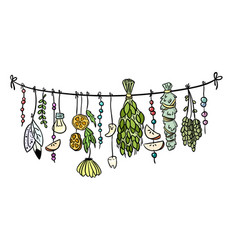 Witch herbs boho hanging colorful doodle vector