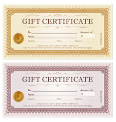 certificate gift coupon template vector image vector image