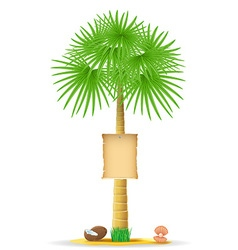 palm tree with sign 02 vector image vector image