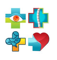 medical body part symbol logo vector image