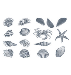 sketch ocean nature set vector image