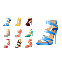 collection various fashion shoes isolated on vector image