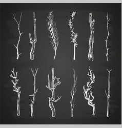 Sketch wood branches set on blackboard vector