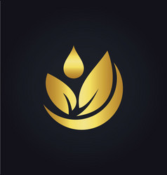 organic green leaf bio gold logo vector image vector image