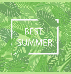 best summer lettering in a frame on the vector image